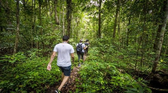 Turismo em Alagoas pode ganhar força com alta do dólar